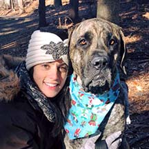Henrik - Brindle Male American Mastiff